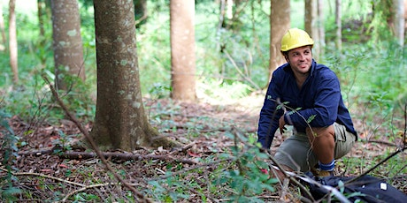 Online Information Session - Forest Systems tickets