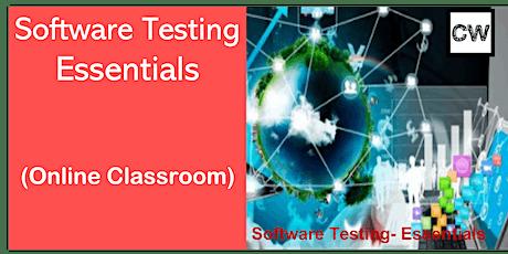 Software Testing (Online Classroom) biglietti