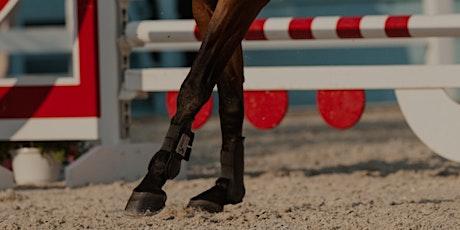 Biomechanics of Jumping Horses: Optimise Performance & Reduce Injuries tickets