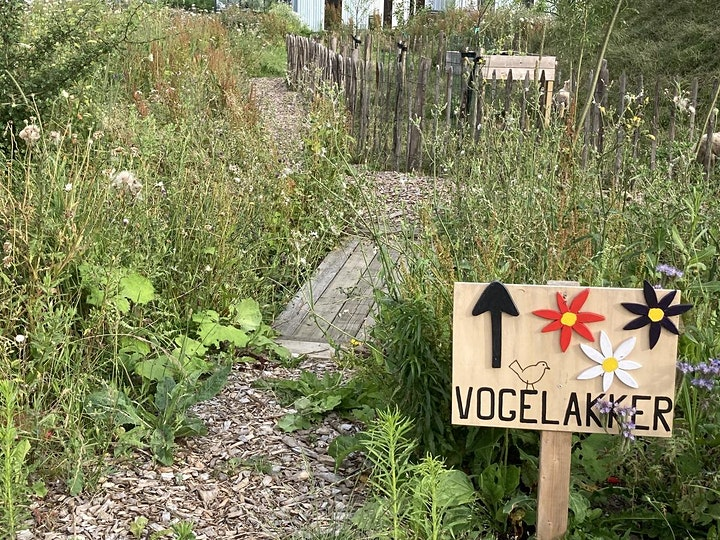 Afbeelding van Atelier De Verbinding voor bewoners Oosterwold