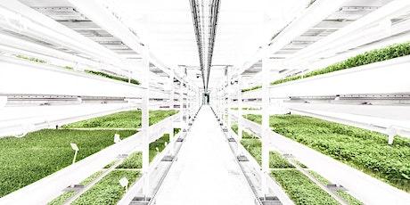 Growing Underground urban farm tour tickets