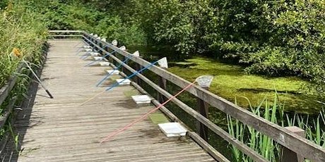 Pond dipping at Gadespring Cressbeds tickets