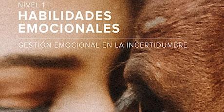 HABILIDADES EMOCIONALES - NIVEL 1 entradas