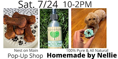 Pop-Up with Homemade by Nellie at Nest!