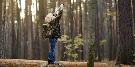 Family woodland activities -wilderness survival, cooking and  shinrin-yoku tickets