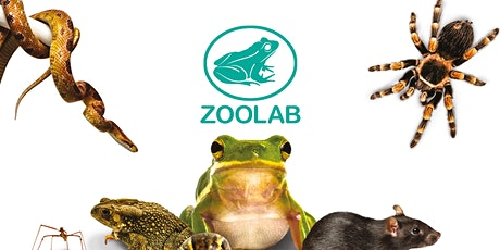 Explore Naturetown with Zoolab tickets