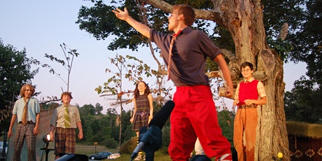 Shakespeare in the Valley: Twelfth Night tickets
