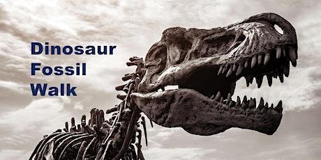 Dinosaur Fossil Walks tickets