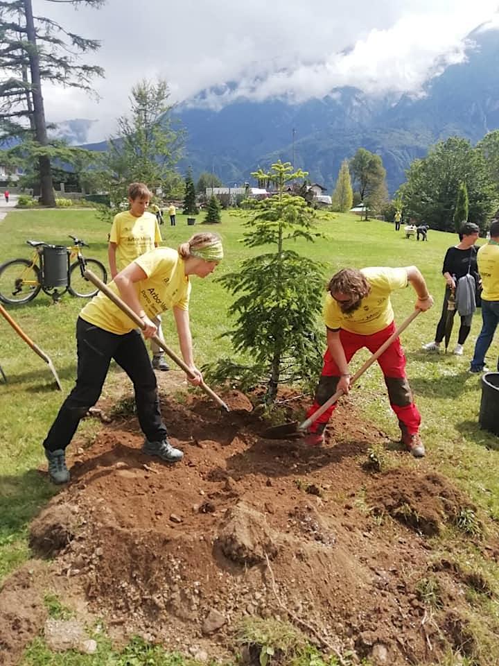 Immagine II ArborMeeting. Roncegno (TN). PRE-ISCRIZIONE
