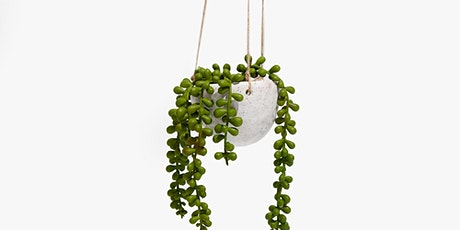 Clay Your Way -  Make Your Own Hanging Planter Workshop tickets