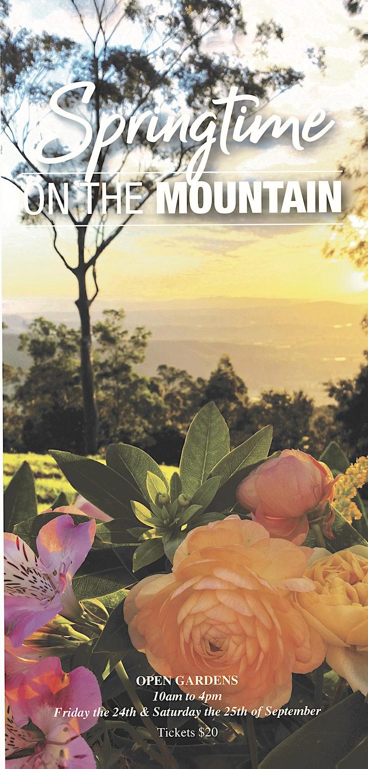 """""""Springtime on the Mountain""""  2021 image"""