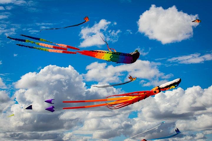 Harden Kite Festival image