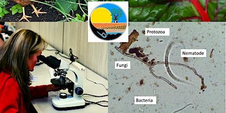 Ecoburbia Exploring Soil Microbes tickets