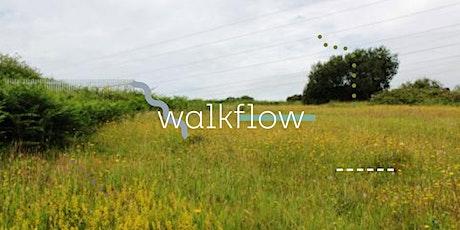 Walk ~ Flow : Thursday 29th July, Heysham Nature Reserve tickets