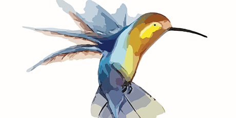 Bluebeard and the Birds - Josephine Dennehy tickets