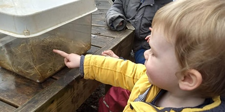 Family Nature Explorers tickets