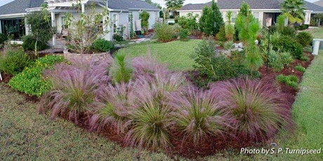 Water Conservation with Drought Tolerant Plants tickets