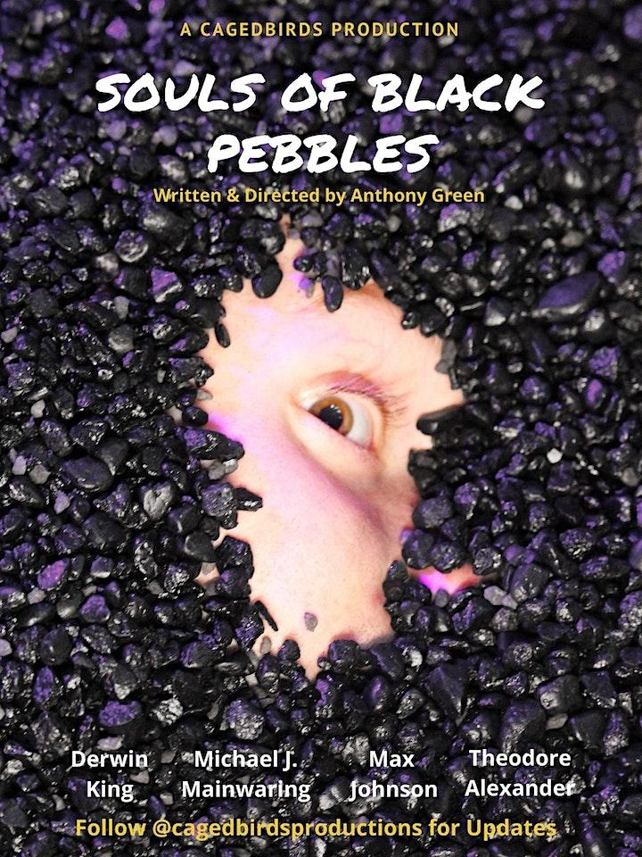 The Souls of Black Pebbles Screening (DC Matinee) image
