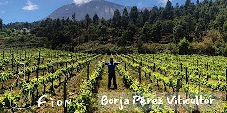 Wine tasting. FÌON's producer close-up: Borja Pérez tickets
