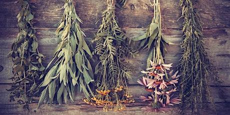 Foundations of Herbal Medicine tickets