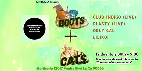Boots N' Cats: A Live Electronic Music Event and Shoe Drive tickets