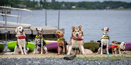 Paddle Photo Shoot with Pro Petshots tickets