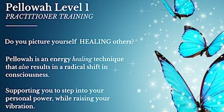 Pellowah Level 1 Practitioner Training tickets