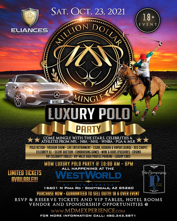 Million Dollar Mingle Celebrity Polo Party Luxury Lounge Experience image
