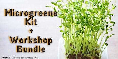 [SG] - Microgreens Kit + Virtual Workshop Bundle tickets