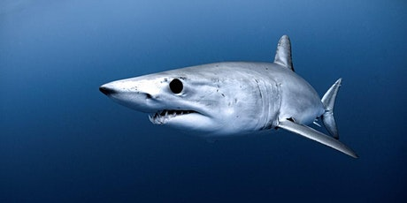 Tracking Oceanic Sharks in a Changing World tickets