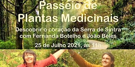 Passeio de Plantas Medicinais em Sintra, com Fernanda Botelho e João Beles entradas