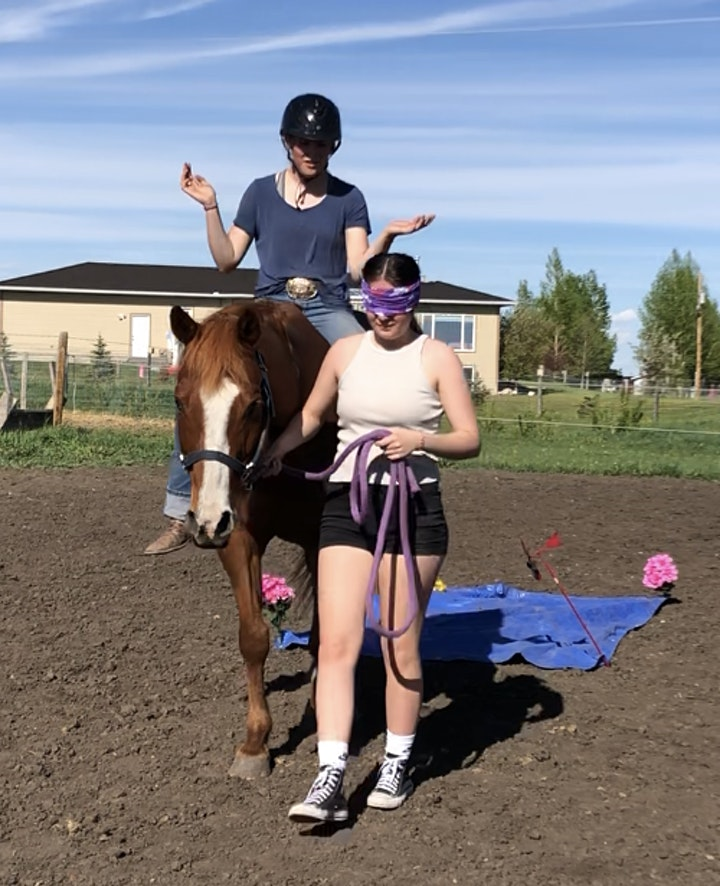 Let Your Light Shine- Teen Equine Assisted Personal Development image