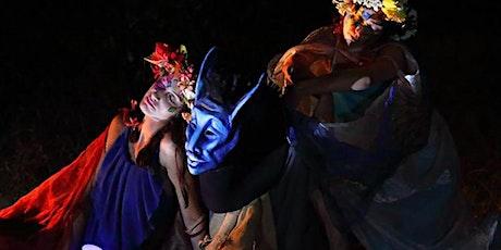 """""""Sogno d'Estate"""" da W. Shakespeare - #Physis21 biglietti"""
