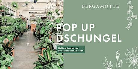 Bergamotte Pop Up Dschungel // Nürnberg Tickets