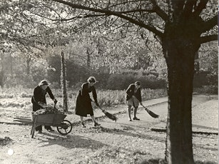 Artists & Gardeners: Highlights of Newnham College's Art & Gardens tickets