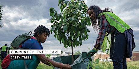 Community Tree Care: Gallatin St NE tickets