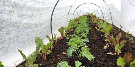 Love Your Garden Longer! Great Ways to Extend the Growing Season tickets