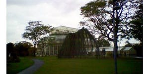 Sketch trip to the National Botanic Gardens, Dublin