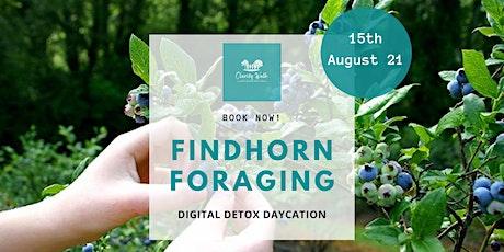 FINDHORN FORAGING DIGITAL DETOX DAYCATION tickets