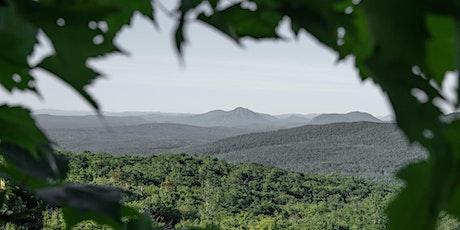 Visitez les derniers terrains disponibles sur le site d'Eastman! billets