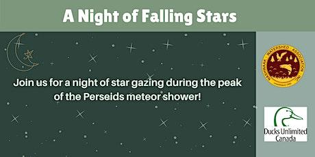 A Night of Falling Stars tickets