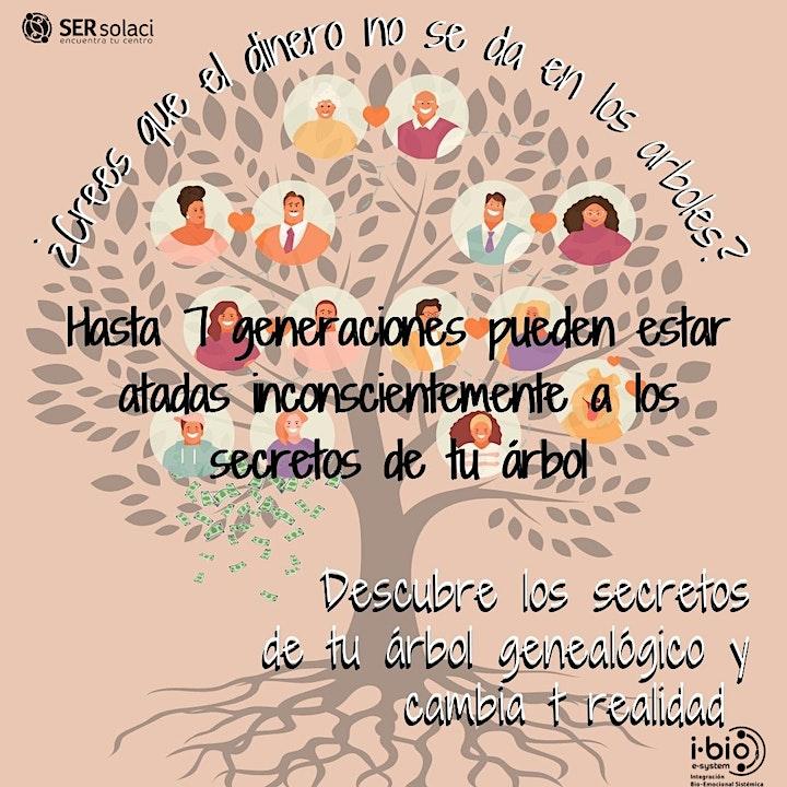 Imagen de II Taller Internacional Psicogenealogía:  sanar conflictos familiaresONLINE