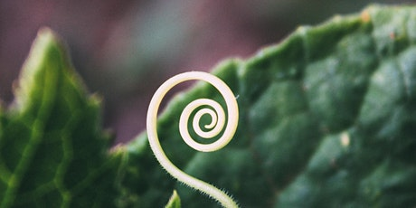 Re-Emergence All- Spiral Community Call tickets