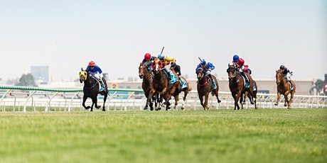 Amalgamated Painting Services Raceday tickets