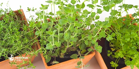 Plant Your Own Herbs! A dementia-friendly activity at Cally Park tickets
