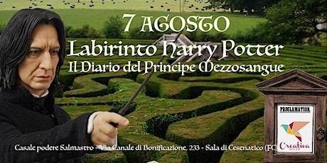 Labirinto Harry Potter - Il Diario del Principe Mezzosangue biglietti