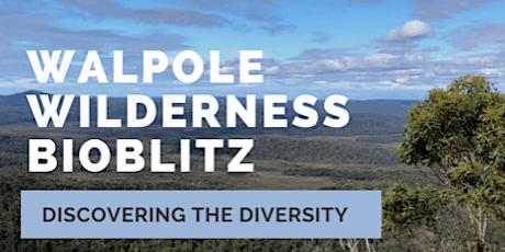 Walpole Wilderness BioBlitz tickets