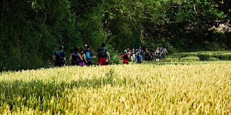 Never Stop London 16km Trail Run - Beaconsfield tickets