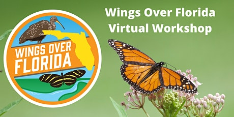 Wings Over Florida Butterfly Workshop Tickets