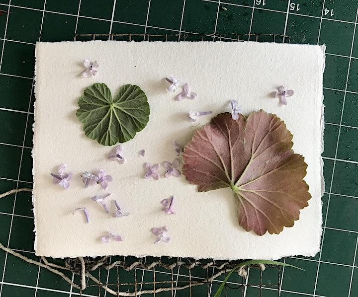 Introduction to Botanical Printing (Sat) image